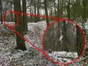 Bigfoot entdeckt?!