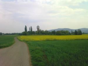 Lauf in den Mai
