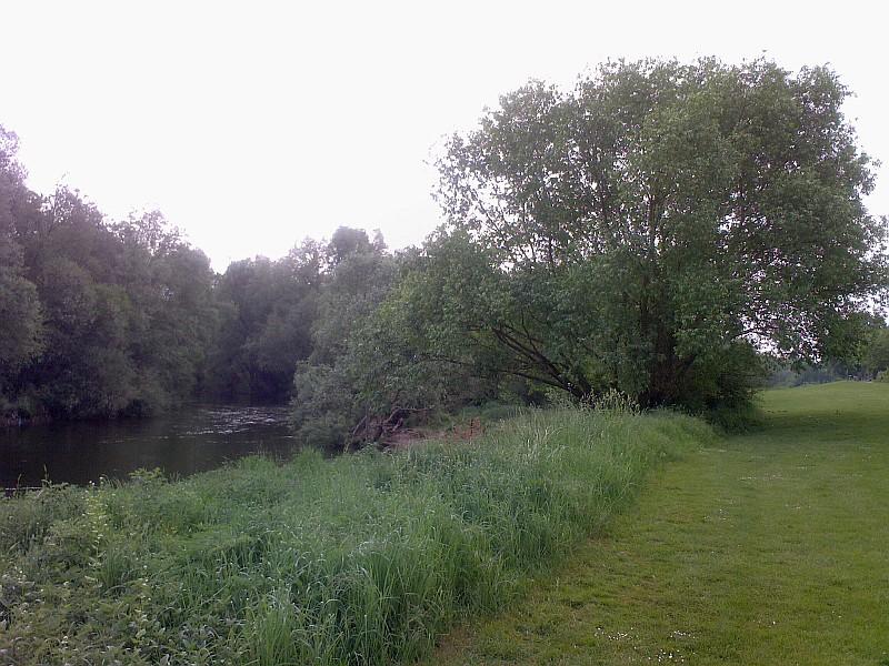 Am schönen Neckarufer entlang