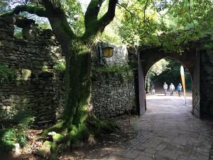 Strahlenburg Trail