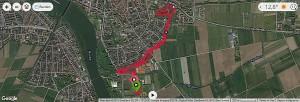 Waldparklauf Ladenburg - Strecke
