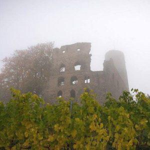 Strahlenburg im Nebel