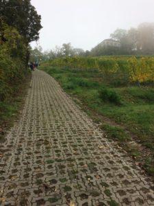 steiler Weg zur Strahlenburg